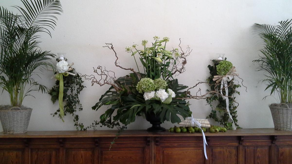 Grand décor de plantes