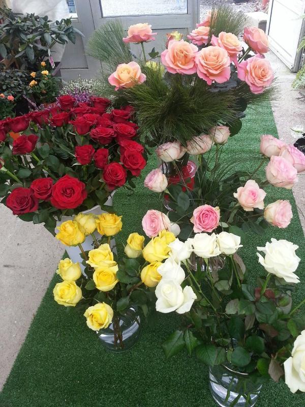 Grand choix de fleurs à Châteauroux