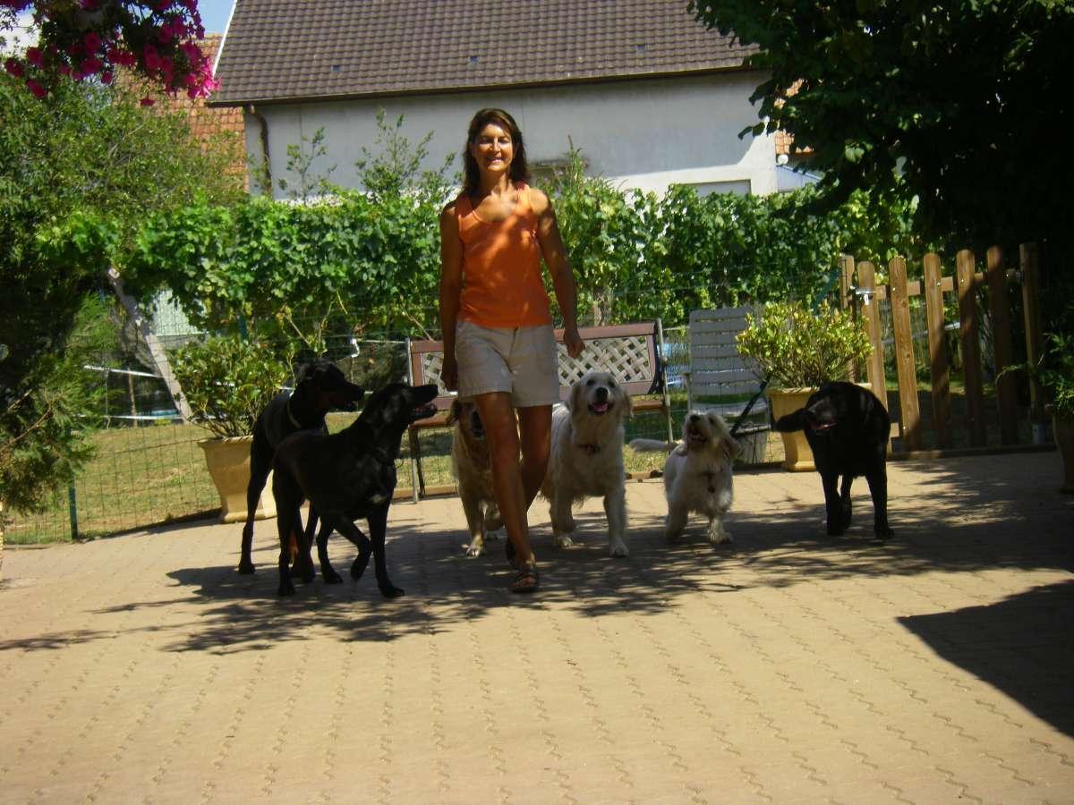la ballade - Tonietto Corinne à Wuenheim (68)