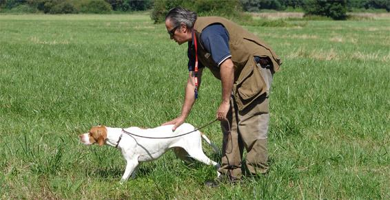 Pensions pour chiens - Education canine