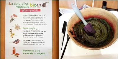 coloration-végétale-biocoiff-brun-velours-mon-coiffeur-bio-evreux-normandie[1]
