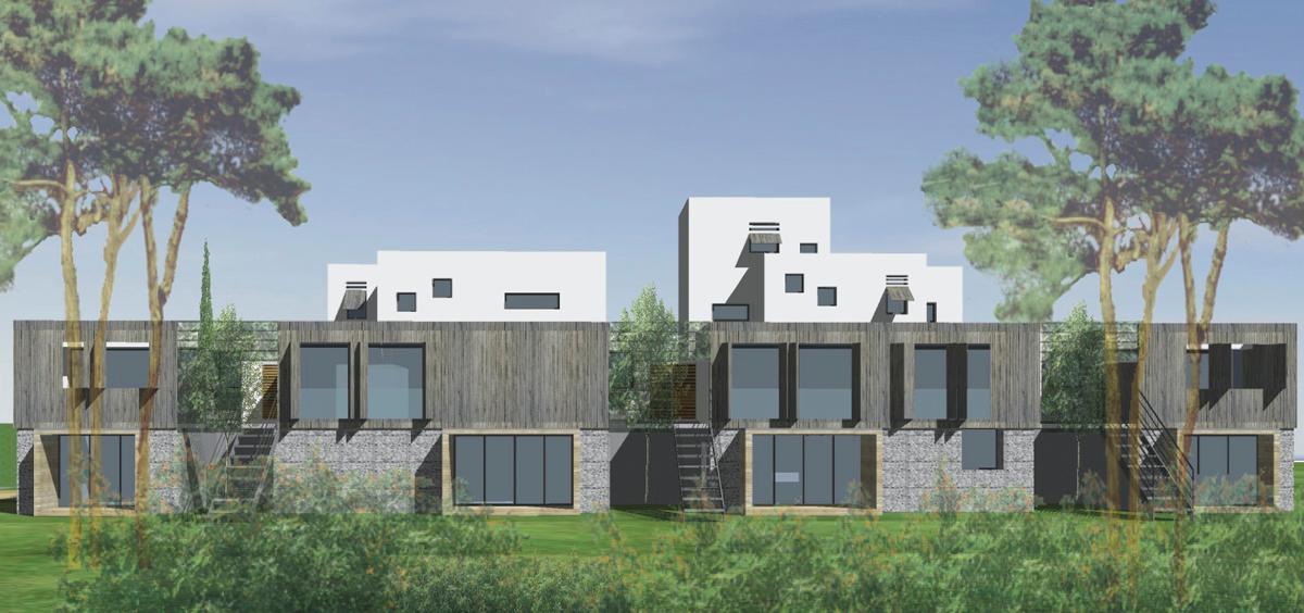 25- Projet d'habitat intermédiaire / Gabions de pierres et bambous.