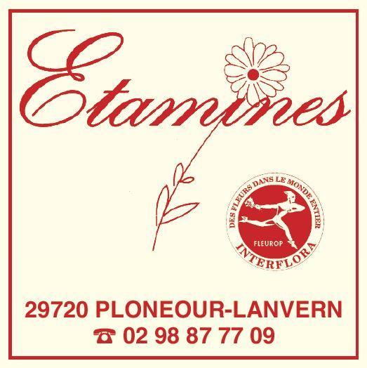 Etamines fleurs, fleuriste à Plonéour Lanvern