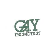 LOGO GAY PROMO