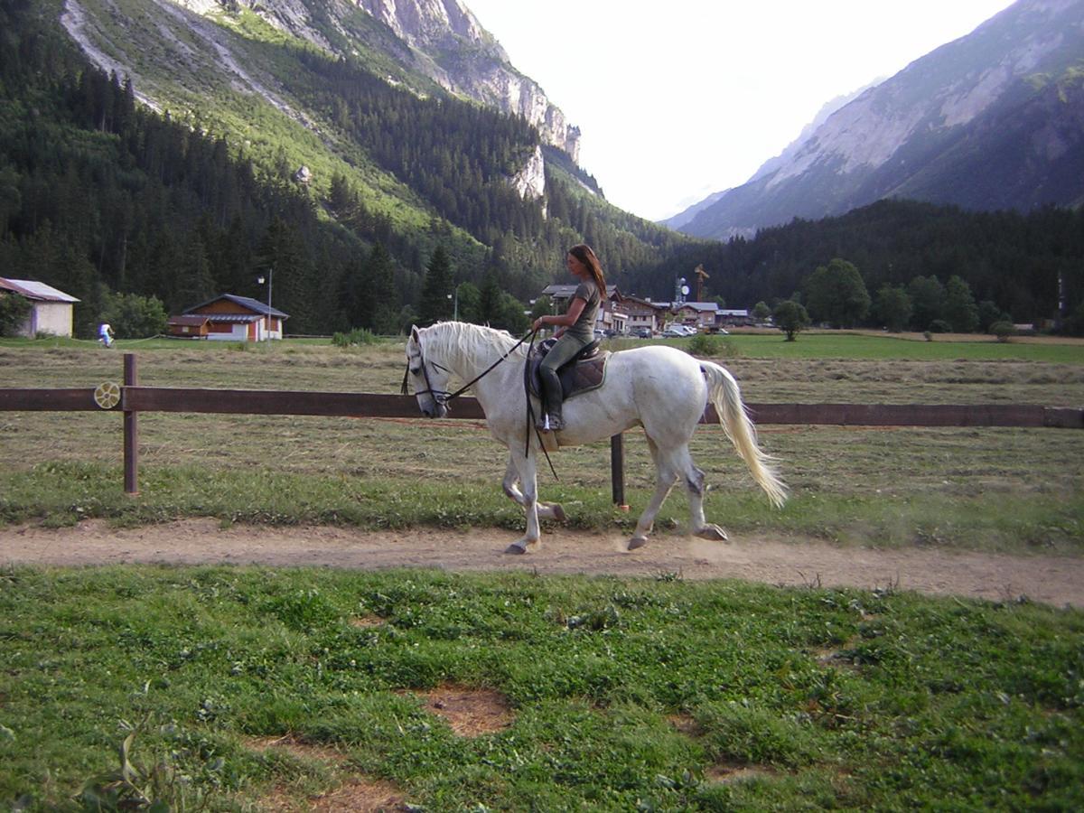 Le Ranch de L'Ancolie en Savoie (73)