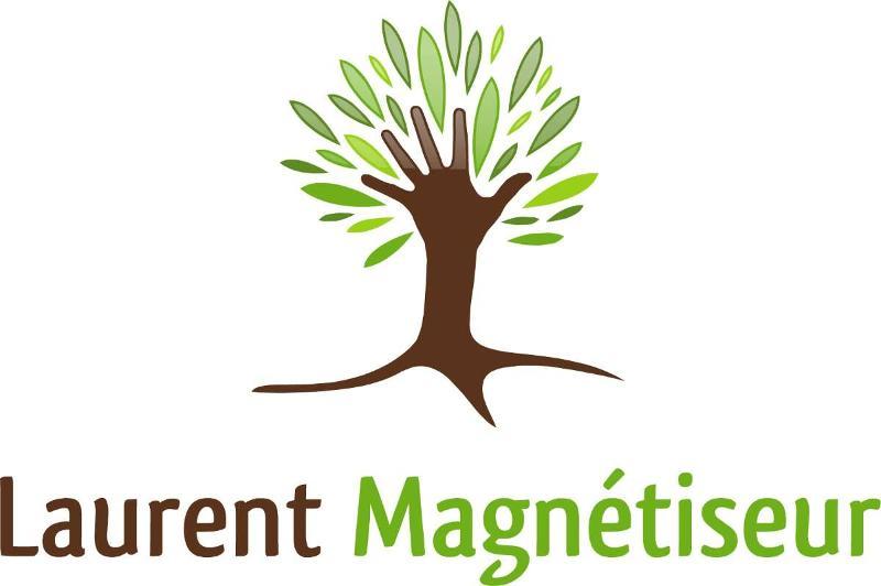 Magnétisme, Reiki, Magnetiseur à orléans (loiret - 45)