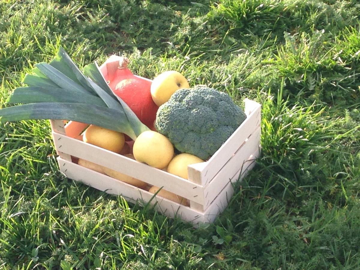 Panier fruits et légumes 3kg