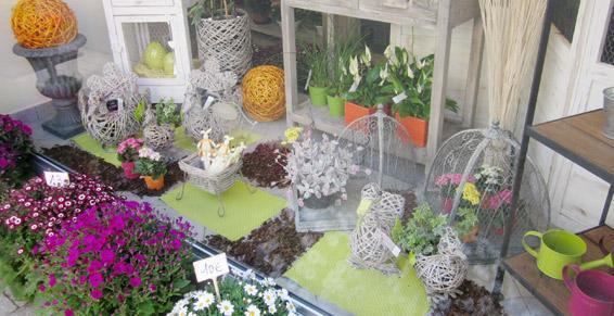Métais Fleurs - Plantes d'intérieur