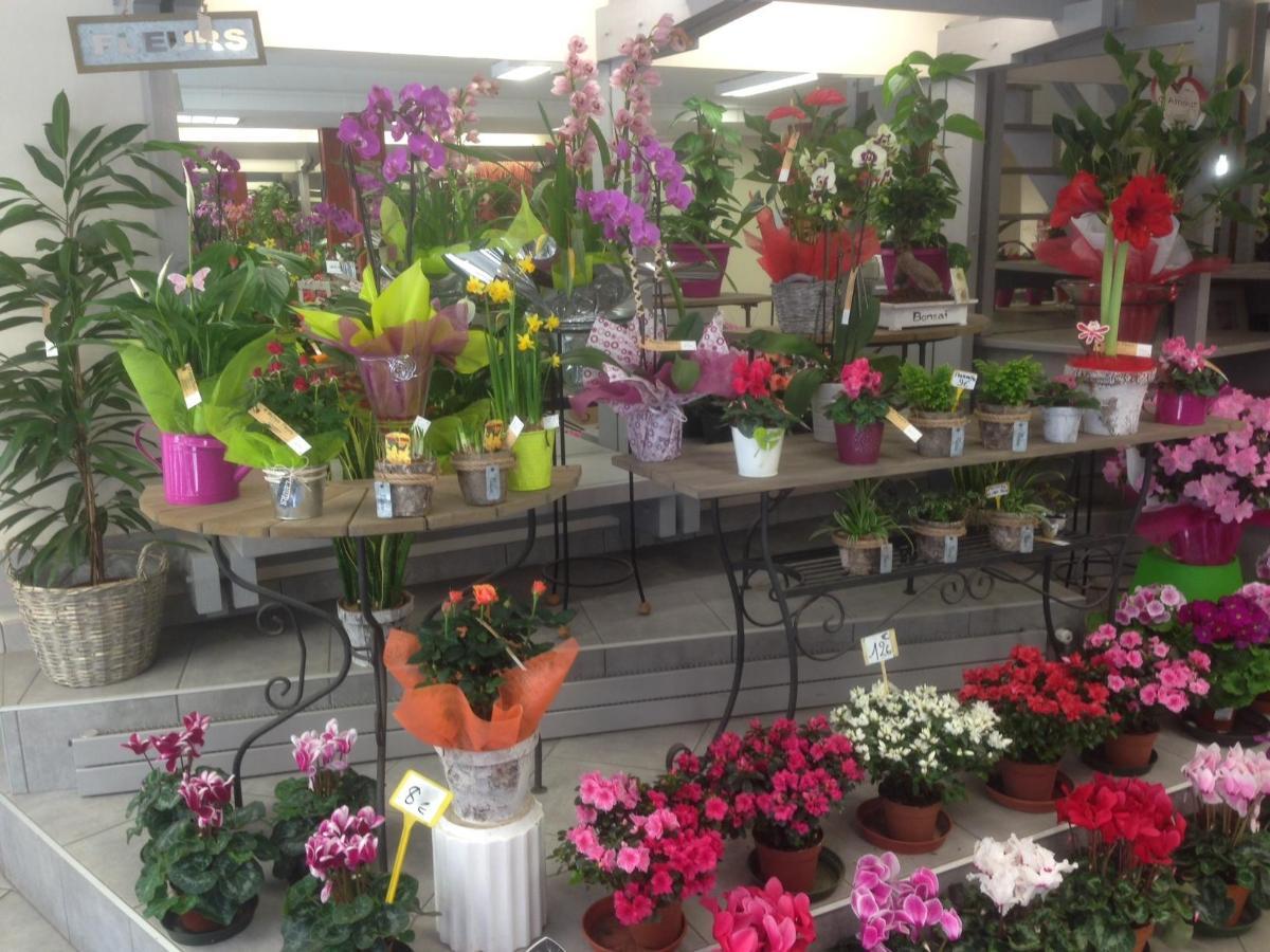 Fleuriste dans l'Indre