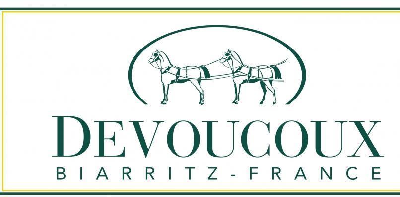 Image result for devoucoux saddle logo